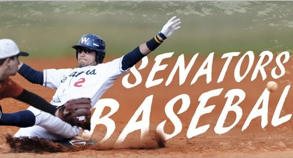 Senators well represented in MLB Draft (Image 1)_12569