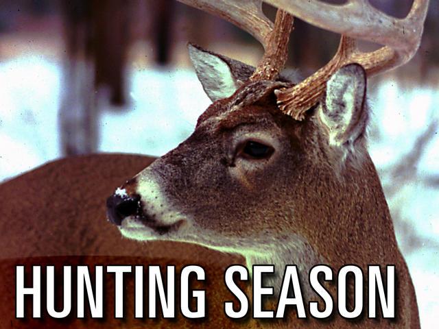 Hunting season_50888