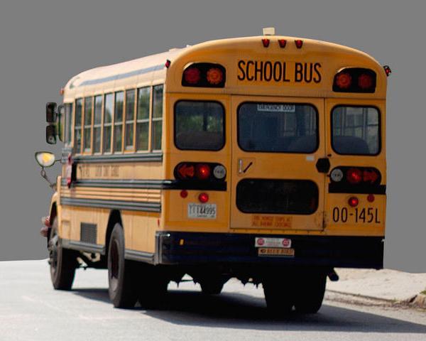 School bus 2_53179
