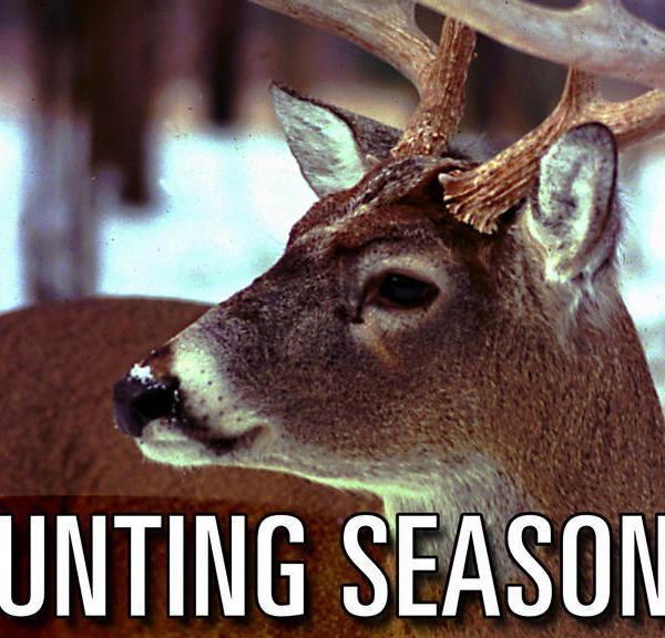 deer season_72348