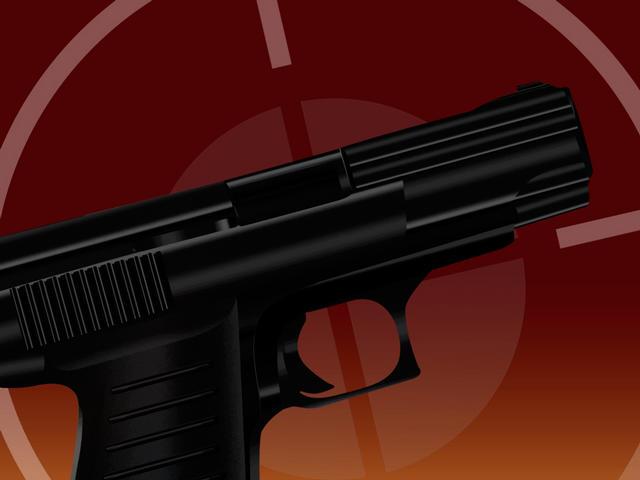 gun siezed_62324