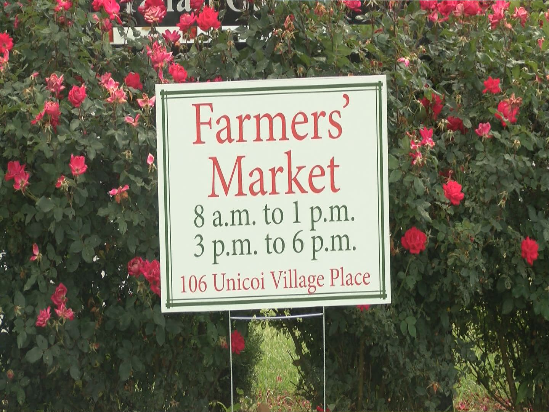 Unicoi Farmers Market_169565
