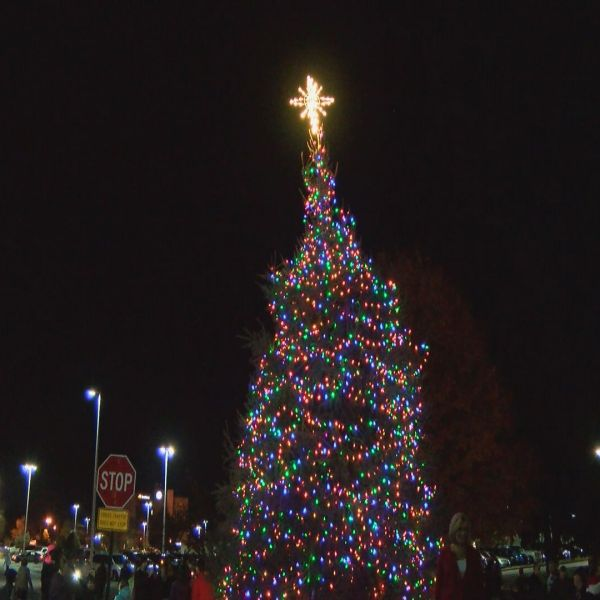 christmas-tree-2_236546