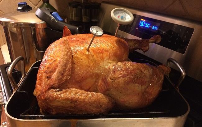 turkey_236852
