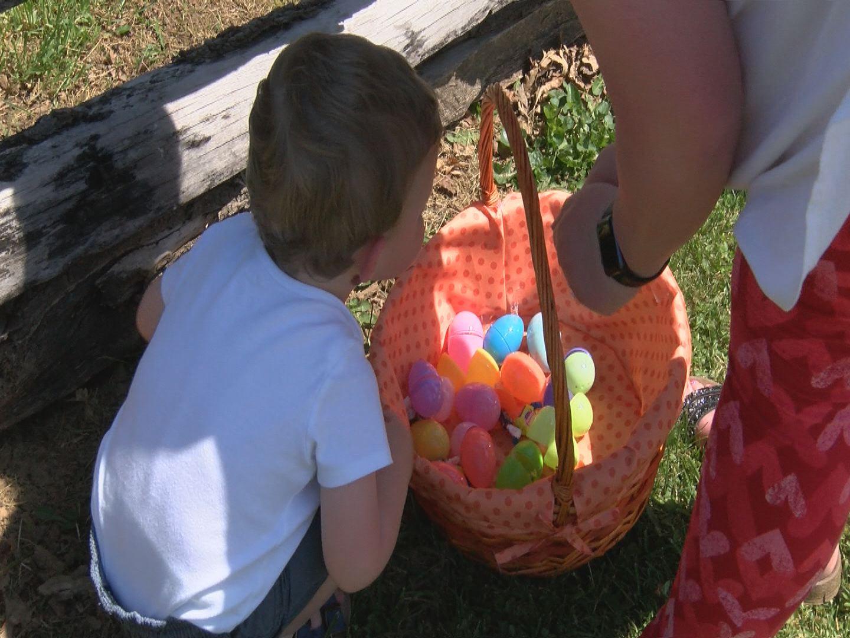 Easter Egg Hunt_316131