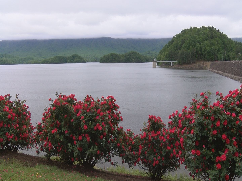 lake levels_328484