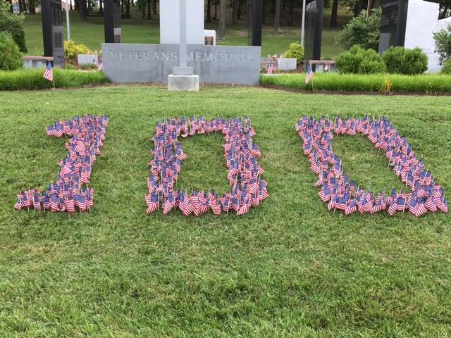 kpt 100 flags_360841