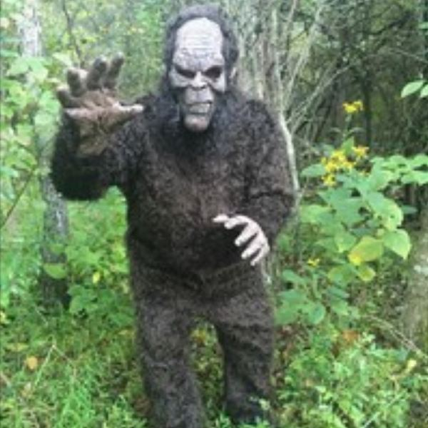 bigfoot image from Bigfoot Day_422101