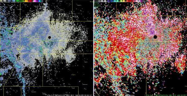 Massive wave of butterflies lights up Denver weather radar (WKRN via NWS Denver and Boulder photo)_415066