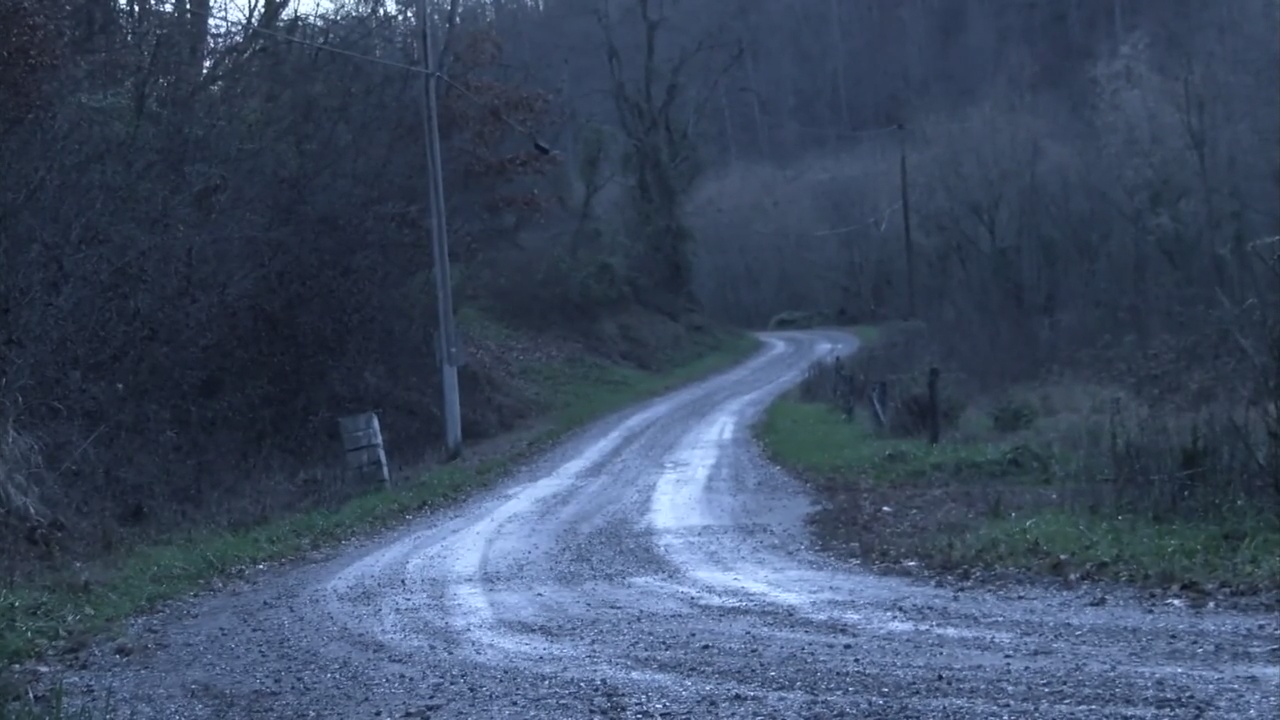 Sheriff: Female's body found in Hawkins Co. had been there for 1-2 months