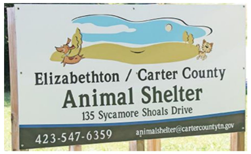 elizabethton carter county animal shelter_448452