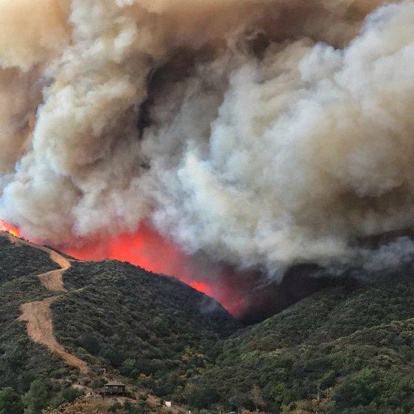 wildfireCAfuneralAP_453462