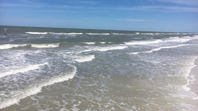 clearwater beach_1526439172283.jpg_42710895_ver1.0_640_360_1526486054156.jpg_42766195_ver1.0_640_360_1526505791567.jpg.jpg