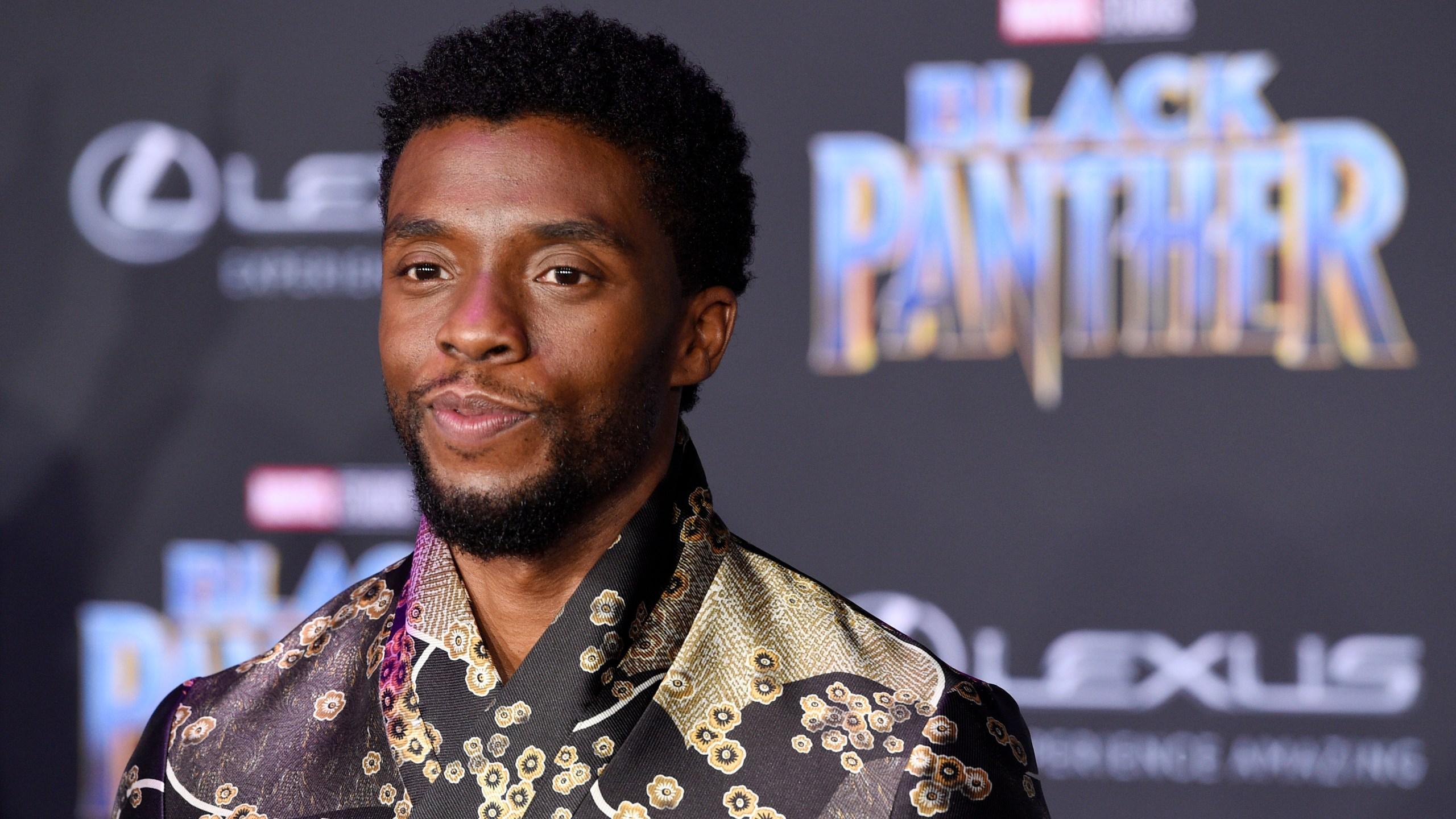 LA_Premiere_of__Black_Panther__28196-159532.jpg92516592