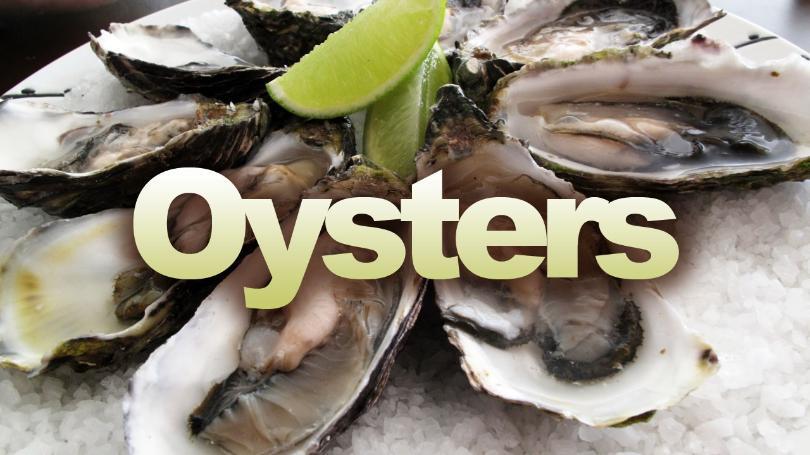Oysters_1528144595293.jpg