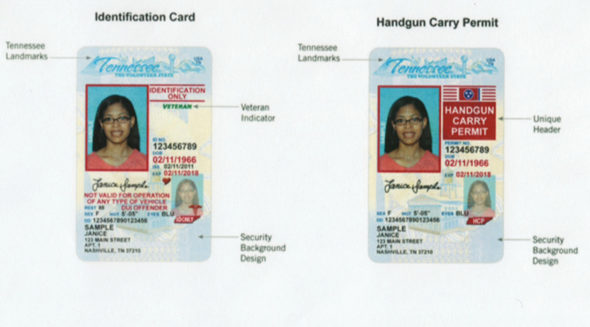 Tennessee vertical driver license