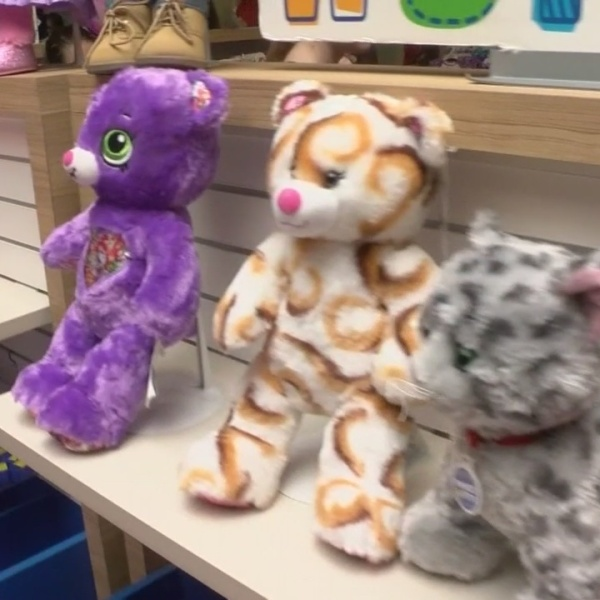 "Johnson City just one town out of dozens to participate in Build-A-Bear's ""Pay Your Age"" day"