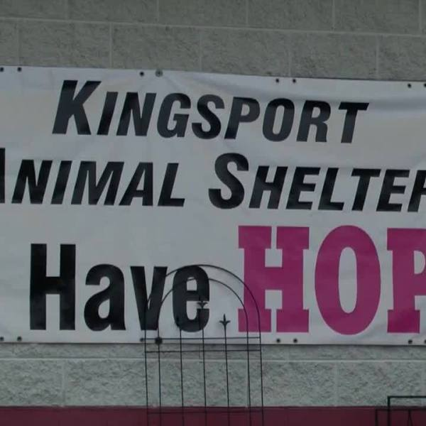 Kingsport_Animal_Shelter_holds_adoption__4_20181215184321