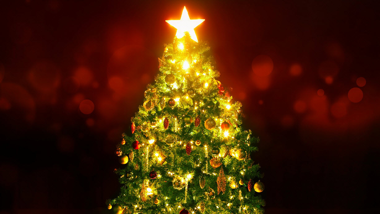 christmas tree generic_1544986361908.jpg.jpg