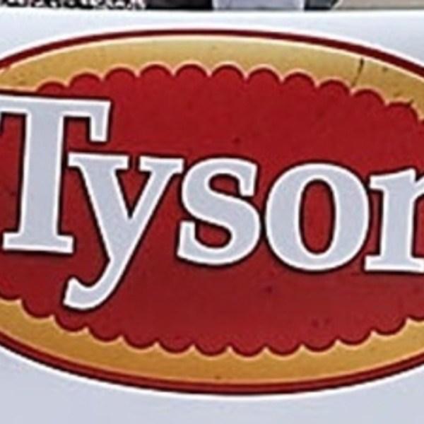 Tyson_1553251215607.jpg
