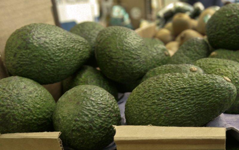 avocadofileAP_1553459130853.jpeg