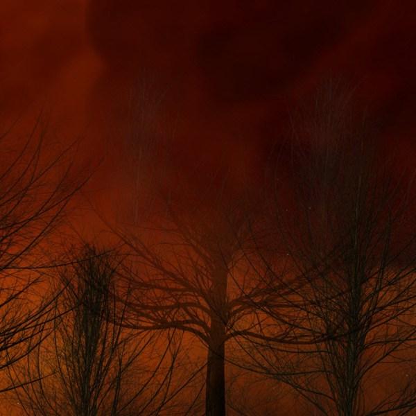 GENERIC WILDFIRE BRUSH FIRE_1555614279410.jpg.jpg