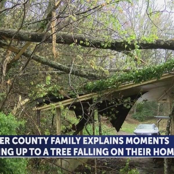 Multiple trees strike Carter County home