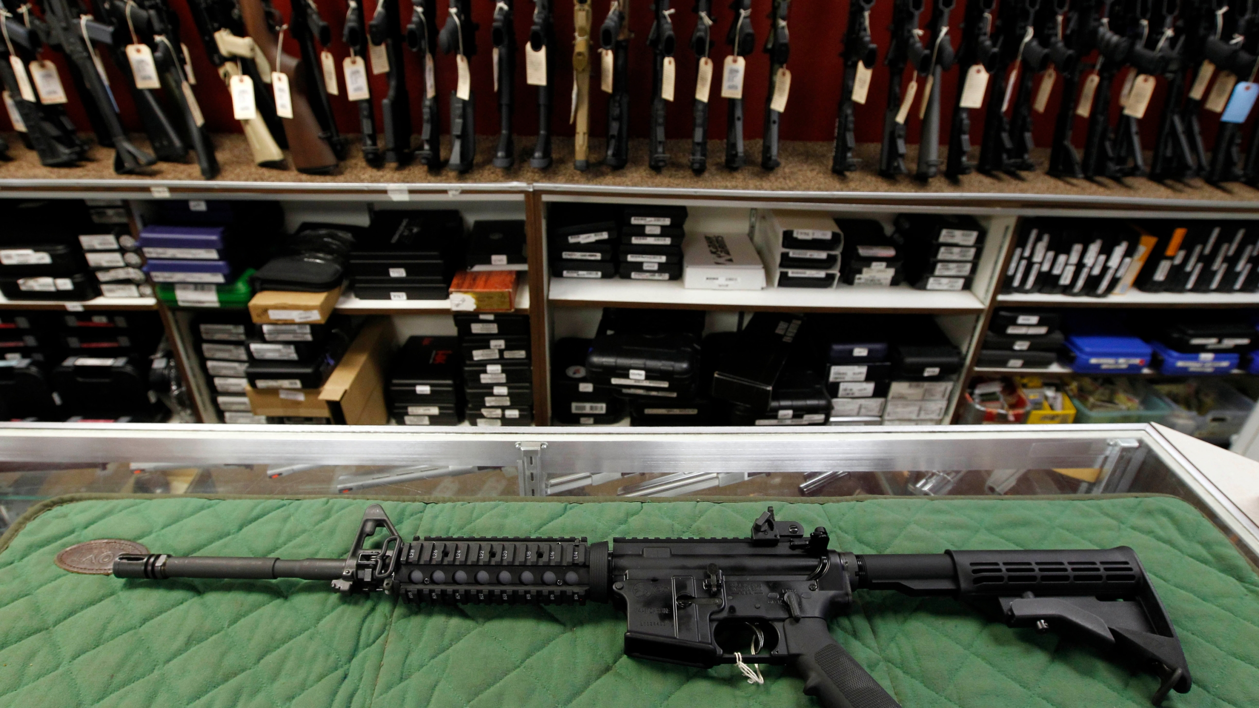 AP_Poll_Guns_24336-159532.jpg51372317