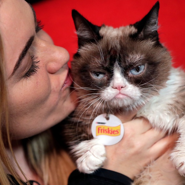 Grumpy_Cat_Coffee_Lawsuit_56493-159532.jpg68089330