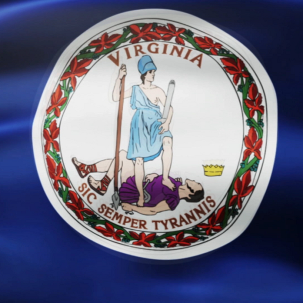 VIRGINIA FLAG_1557536256632.png.jpg