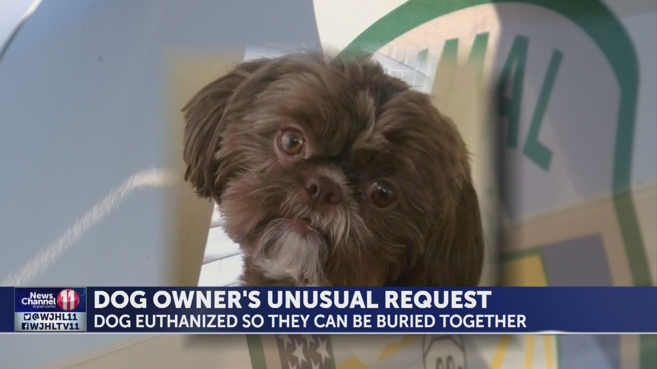 Virginia woman to be buried with dog