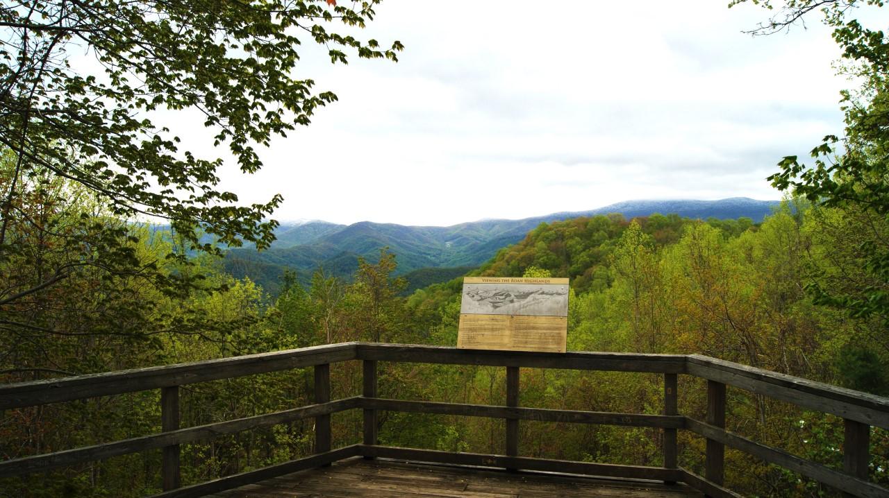 thumbnail_roan-mountain_chestnut-ridge_274604