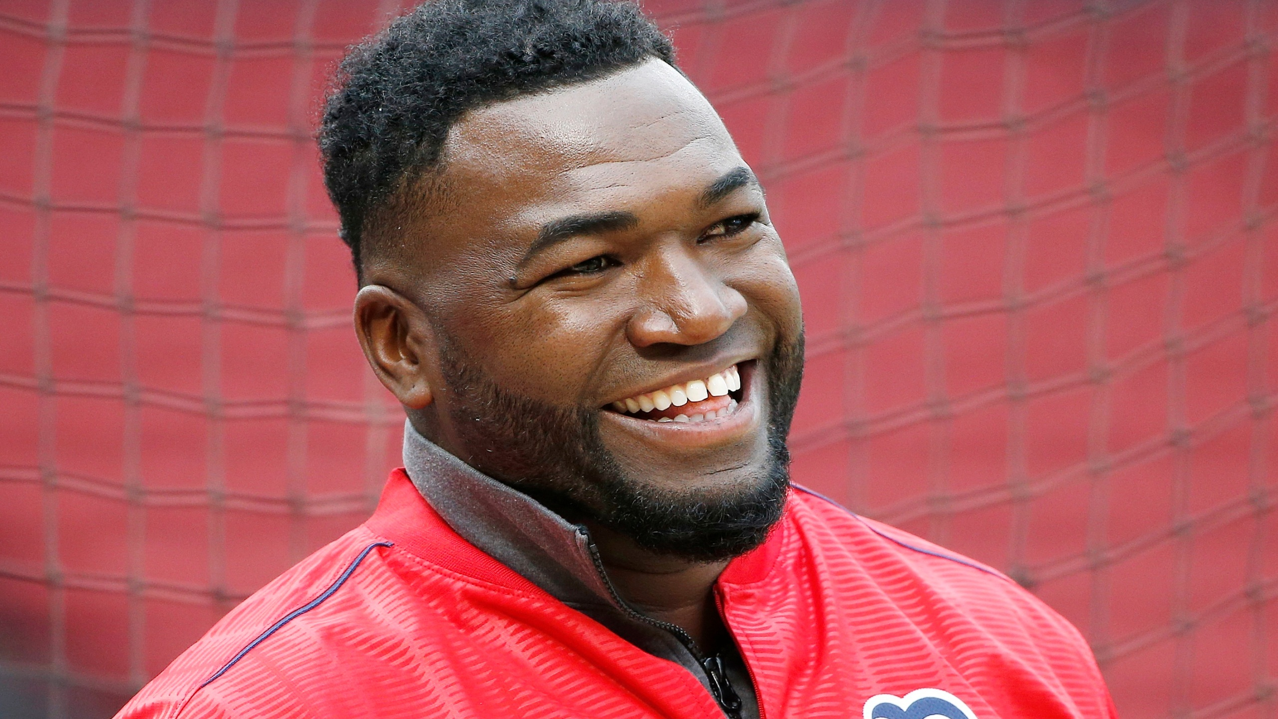 David_Ortiz_Shot_Baseball_26592-159532.jpg50670032